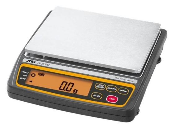 d3c836182774 A and D Scales And Balances|Data Weighing Systems