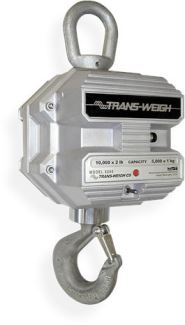 6260CS Crane Scale with wireless display